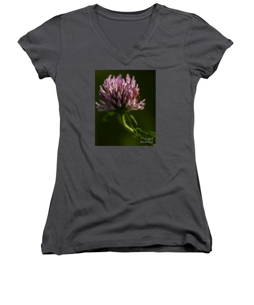 Meadow Clover Women's V-Neck T-Shirt