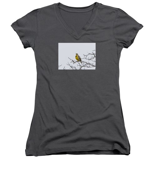 Meadowlark In Tree Women's V-Neck T-Shirt