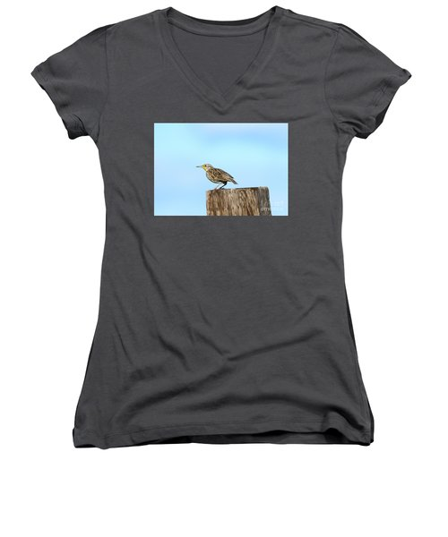 Meadowlark Roost Women's V-Neck T-Shirt (Junior Cut) by Mike Dawson
