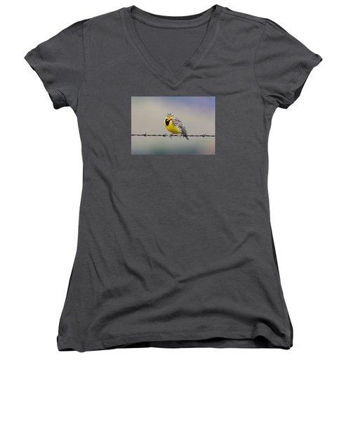 Meadowlark Stare Women's V-Neck T-Shirt (Junior Cut) by Marc Crumpler
