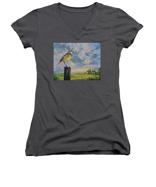 Melancholy Song Women's V-Neck T-Shirt (Junior Cut) by AnnaJo Vahle