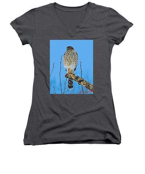 Women's V-Neck T-Shirt (Junior Cut) featuring the digital art Merlin    Not The Majician by John Selmer Sr