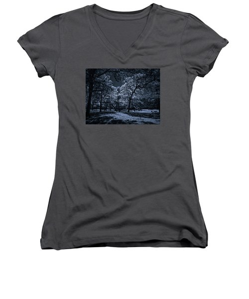 Women's V-Neck T-Shirt (Junior Cut) featuring the photograph Midnight Blues by Linda Unger