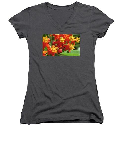 Milkweed Flowers Women's V-Neck T-Shirt