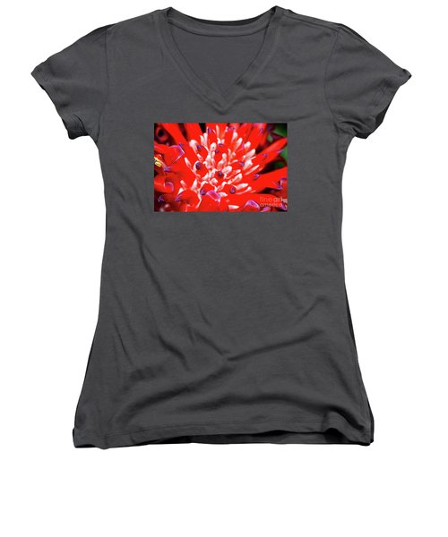 Women's V-Neck T-Shirt (Junior Cut) featuring the photograph Flaming Torch Bromeliad By Kaye Menner by Kaye Menner