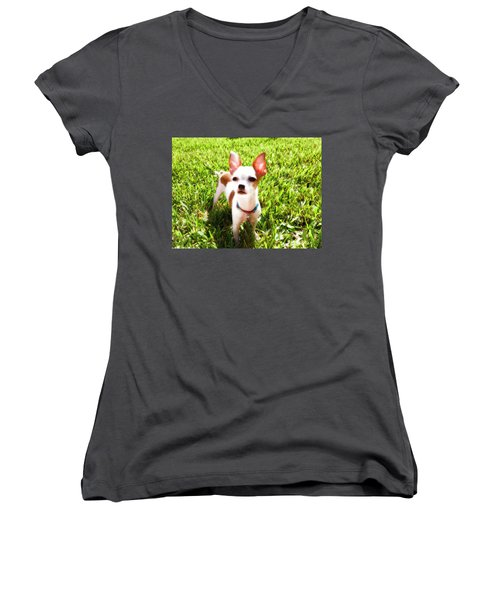 Mini Dog Women's V-Neck T-Shirt (Junior Cut) by Josy Cue