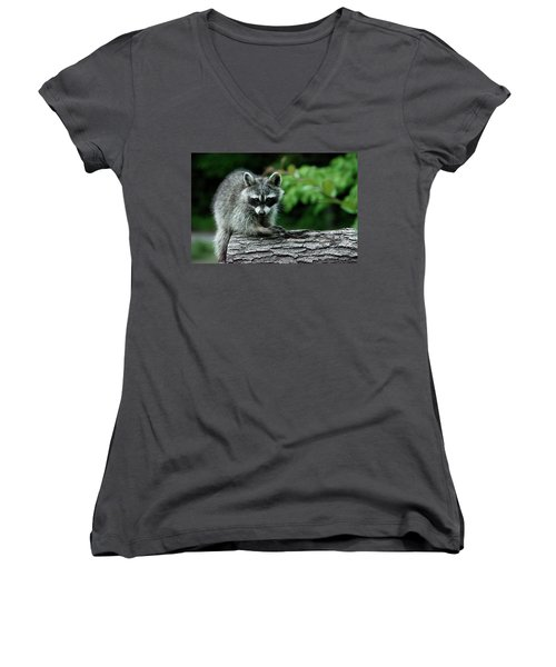 Women's V-Neck T-Shirt (Junior Cut) featuring the photograph Mischievous by Linda Segerson