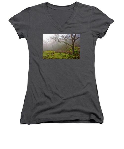 Misty Forest Women's V-Neck T-Shirt