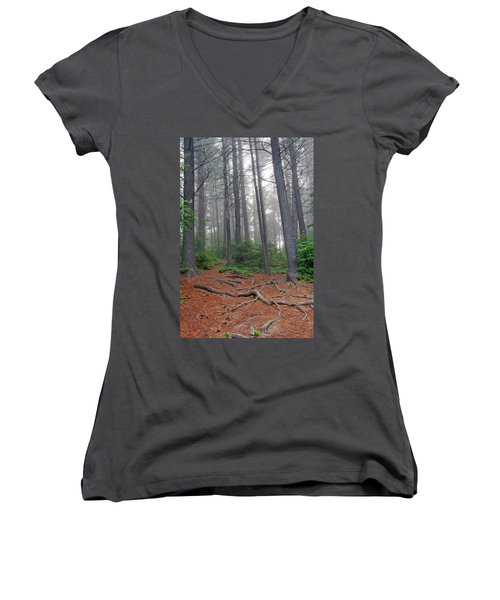 Misty Morning In An Algonquin Forest Women's V-Neck