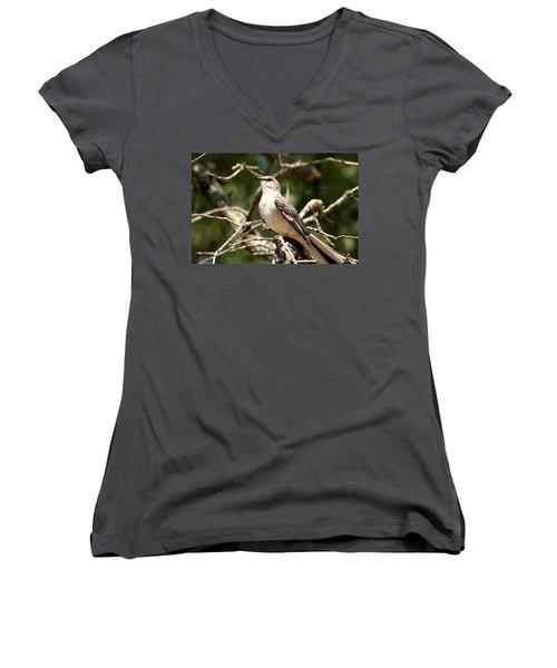 Women's V-Neck T-Shirt (Junior Cut) featuring the photograph Mockingbird  by Sheila Brown