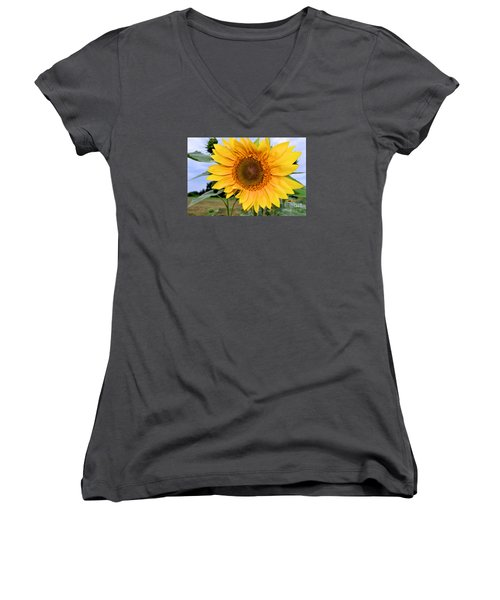 Molly Women's V-Neck T-Shirt (Junior Cut) by Sandy Molinaro