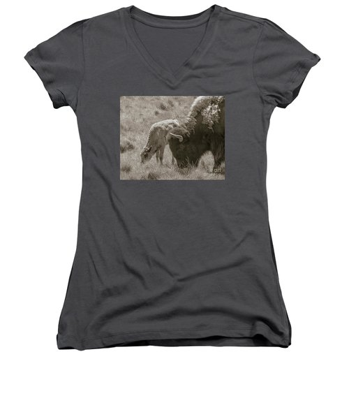 Women's V-Neck T-Shirt (Junior Cut) featuring the photograph Mom And Baby Buffalo by Rebecca Margraf