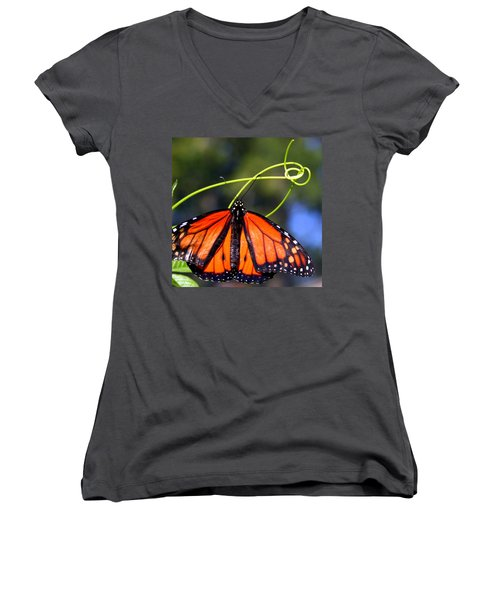Women's V-Neck T-Shirt (Junior Cut) featuring the photograph Monarch Butterfly by Laurel Talabere