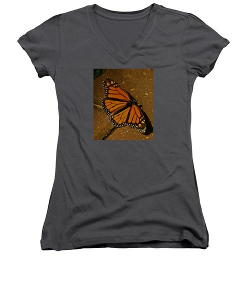 Women's V-Neck T-Shirt (Junior Cut) featuring the photograph Monarch Butterfly by Ramona Whiteaker