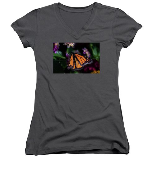 Women's V-Neck T-Shirt (Junior Cut) featuring the photograph Monarch by Jay Stockhaus