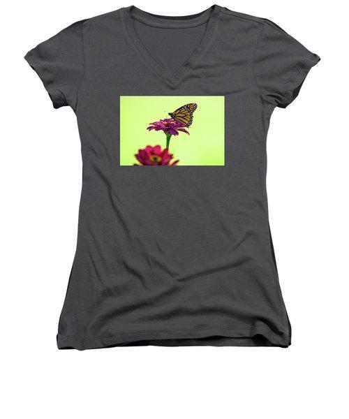 Monarch On A Zinnia Women's V-Neck T-Shirt (Junior Cut) by Shelly Gunderson