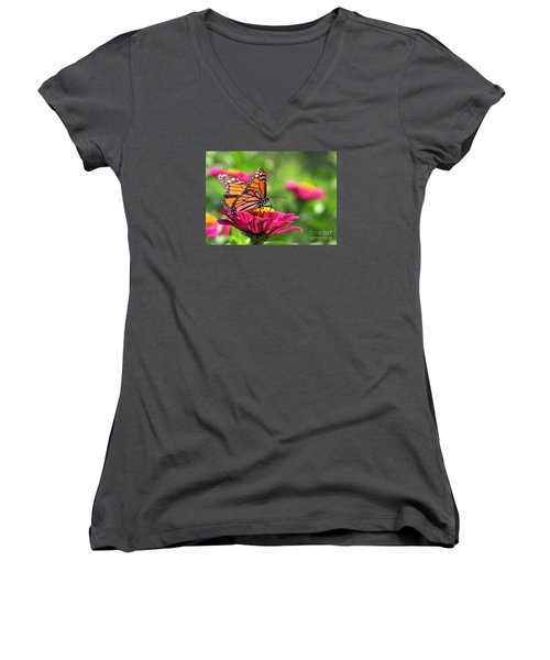 Monarch Visiting Zinnia Women's V-Neck T-Shirt