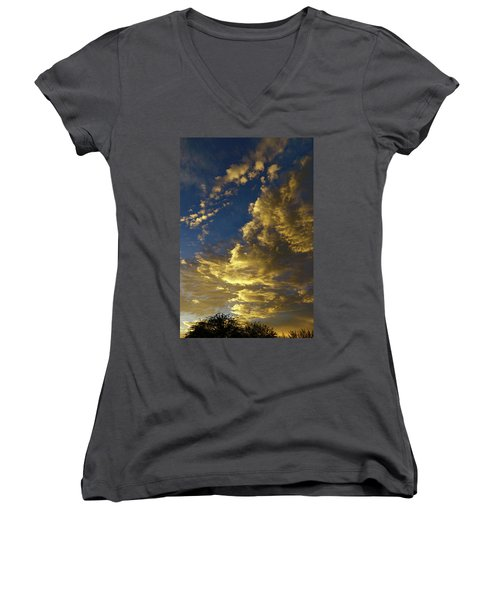 Monsoon Warmth Women's V-Neck T-Shirt