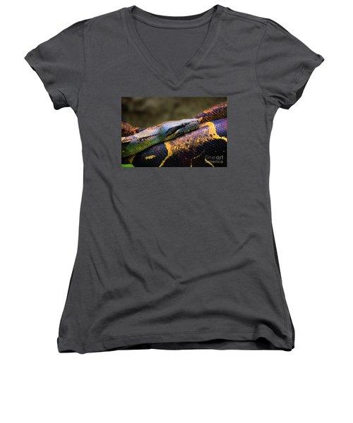 Don't Wear This Boa Women's V-Neck T-Shirt (Junior Cut) by Al Bourassa