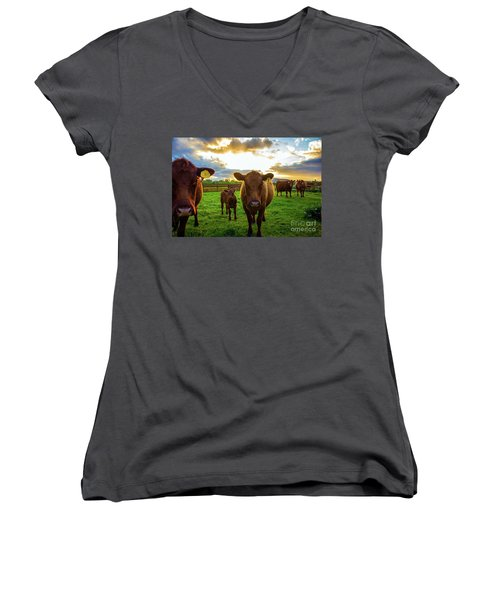 Moo Women's V-Neck (Athletic Fit)