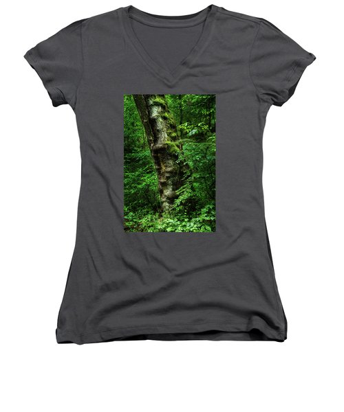 Moody Tree In Forest Women's V-Neck