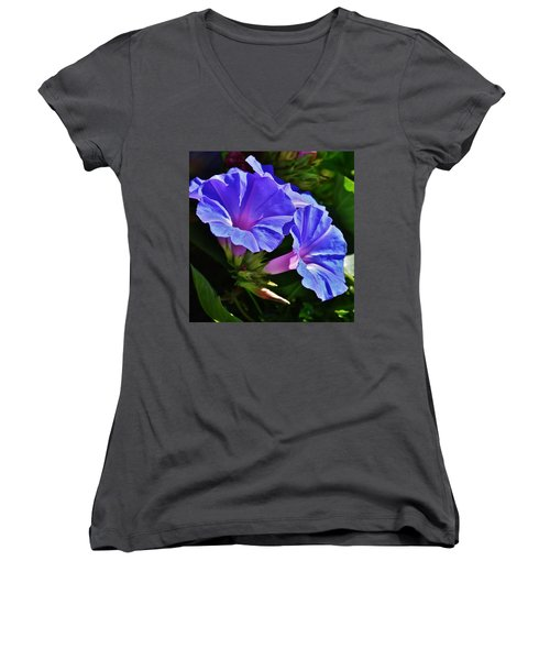 Morning Glory Flower Women's V-Neck T-Shirt (Junior Cut) by Werner Lehmann