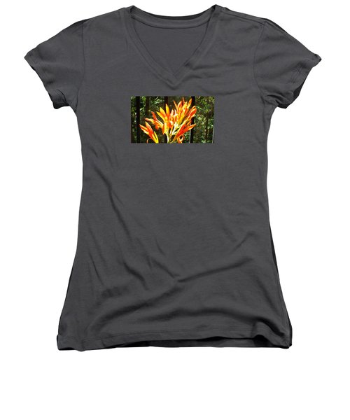 Women's V-Neck T-Shirt (Junior Cut) featuring the photograph Morning Glory by Jake Hartz