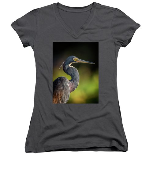 Morning Portrait Women's V-Neck T-Shirt