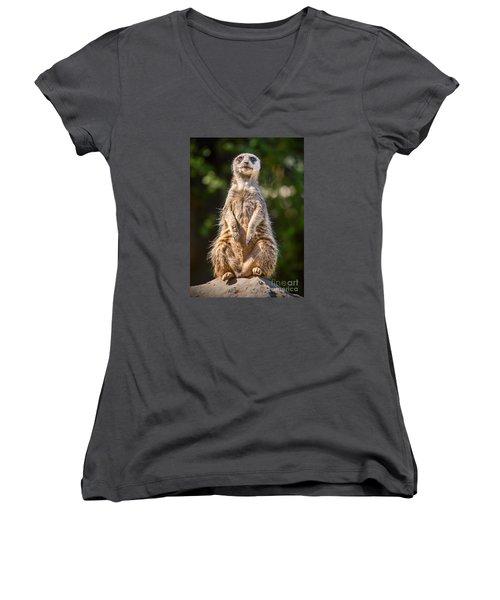Morning Sun Women's V-Neck T-Shirt (Junior Cut) by Jamie Pham
