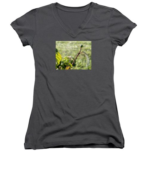 Morning Web #1 Women's V-Neck (Athletic Fit)