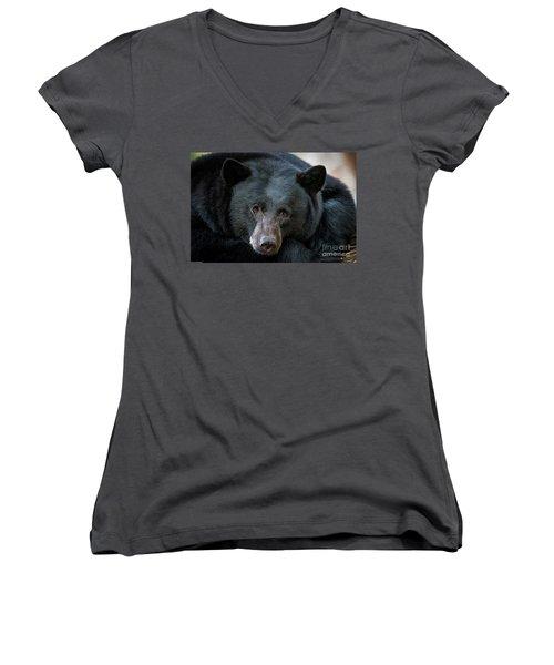 Mother Bear Women's V-Neck T-Shirt (Junior Cut) by Mitch Shindelbower