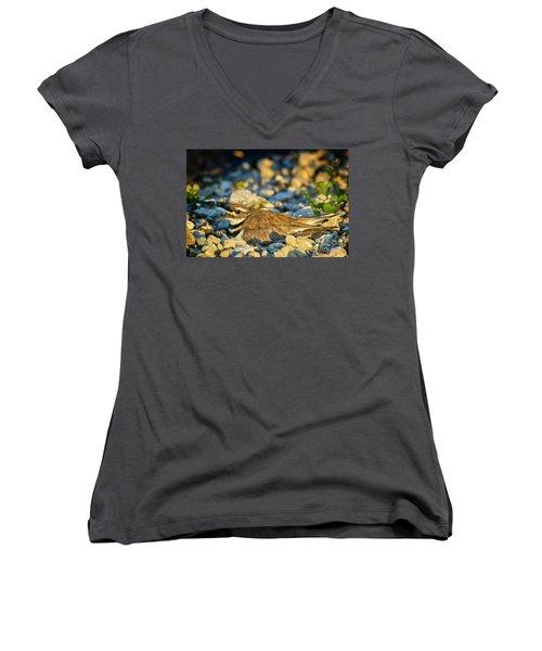 Mother Killdeer 2 Women's V-Neck T-Shirt