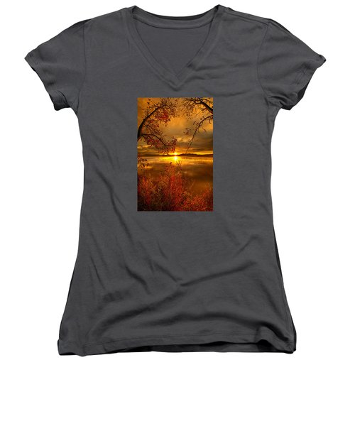 Mother Nature's Son Women's V-Neck T-Shirt (Junior Cut) by Phil Koch