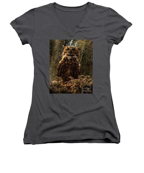 Mother Owl Posing Women's V-Neck T-Shirt (Junior Cut) by Jane Axman