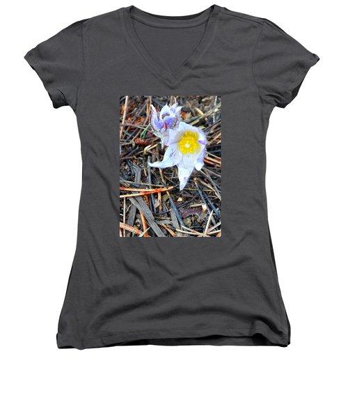 Mount Margaret Spring 14344 Women's V-Neck T-Shirt (Junior Cut) by Jerry Sodorff