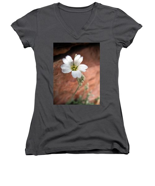 Women's V-Neck T-Shirt (Junior Cut) featuring the photograph Mountain Beauty by RC DeWinter