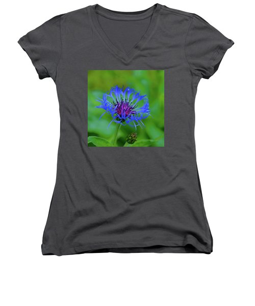 Mountain Cornflower Women's V-Neck (Athletic Fit)