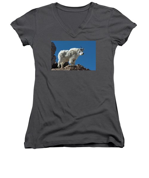 Women's V-Neck T-Shirt featuring the photograph Mountain Goat 2 by Gary Lengyel