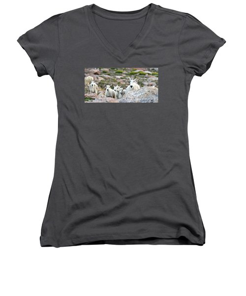 Women's V-Neck T-Shirt (Junior Cut) featuring the photograph Mountain Goat Family Panorama by Scott Mahon