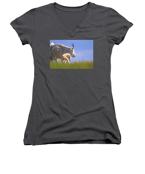 Women's V-Neck T-Shirt (Junior Cut) featuring the photograph Mountain Goat Light by Scott Mahon