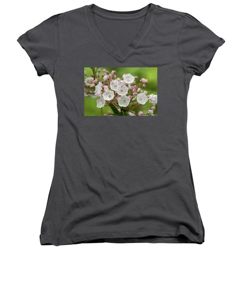 Mountain Laurel Women's V-Neck T-Shirt