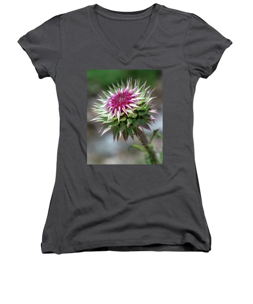 Mountain Thistle Women's V-Neck (Athletic Fit)