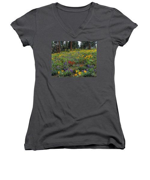 Mountain Wildflowers Women's V-Neck T-Shirt