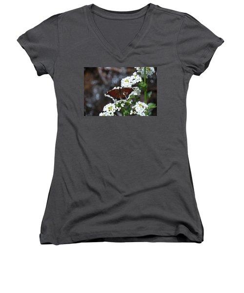 Mourning Cloak Women's V-Neck T-Shirt (Junior Cut) by Jason Coward