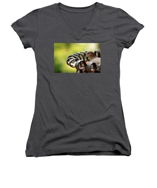 Mourning Dove In A Flower Planter Women's V-Neck T-Shirt (Junior Cut) by Debbie Oppermann