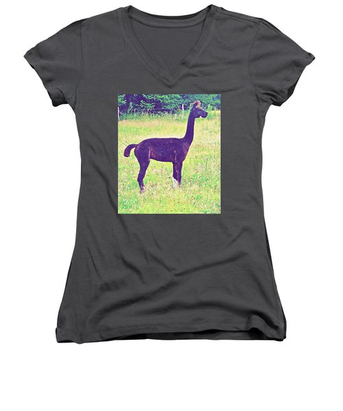 Mr Alpaca Women's V-Neck