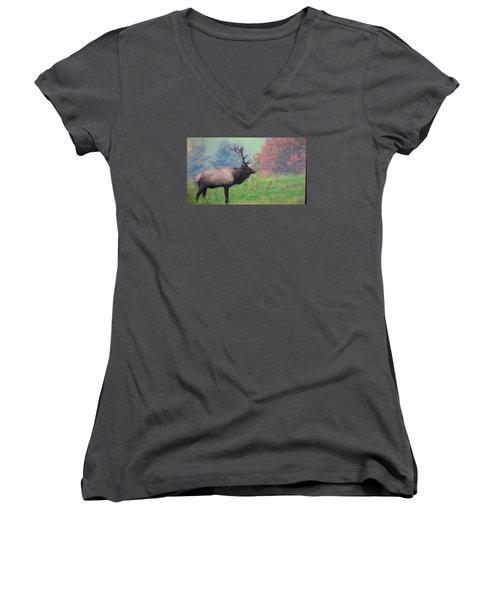 Mr Elk Enjoying The Autumn Women's V-Neck T-Shirt (Junior Cut) by Jeanette Oberholtzer