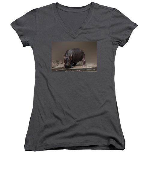 Mr. Hippo Women's V-Neck T-Shirt