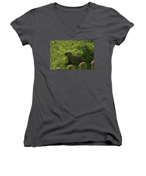 Mr Woodchuck Women's V-Neck T-Shirt