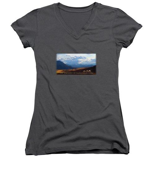Mt. Denali National Park Women's V-Neck T-Shirt (Junior Cut) by Ann Lauwers